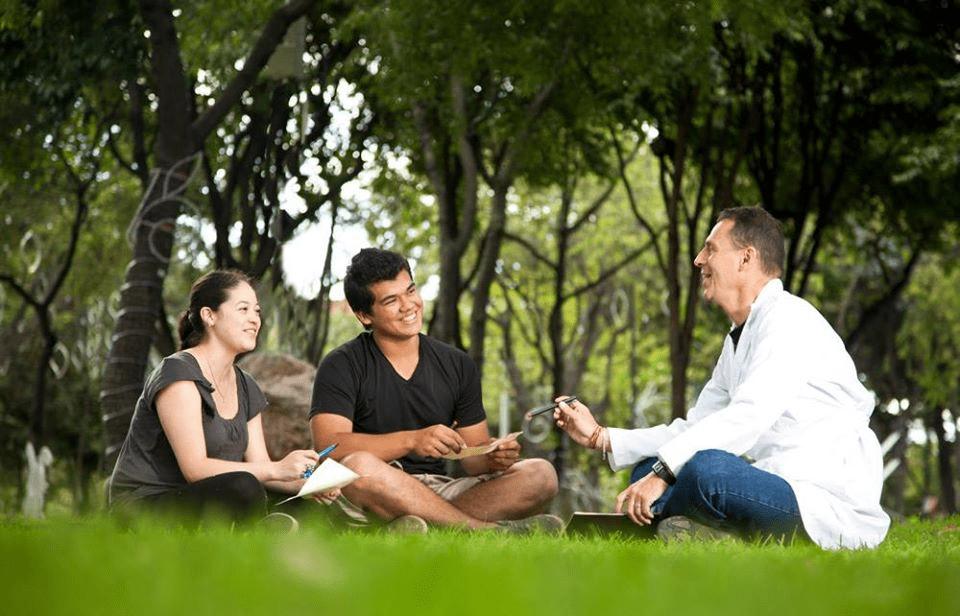 tratamientos para la personalidad y patología dual